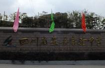 四川省安岳实验中学